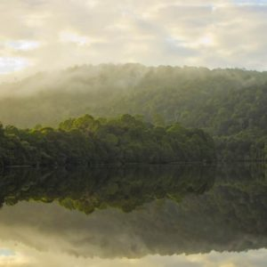 Pieman River reflections
